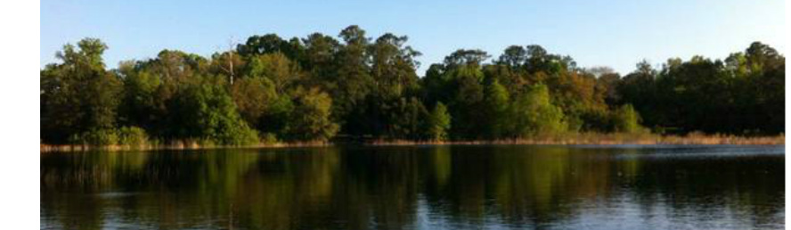 LOTS AVAILABLE FOR YOUR MOBILE HOME OR RV - TWIN LAKES MHP